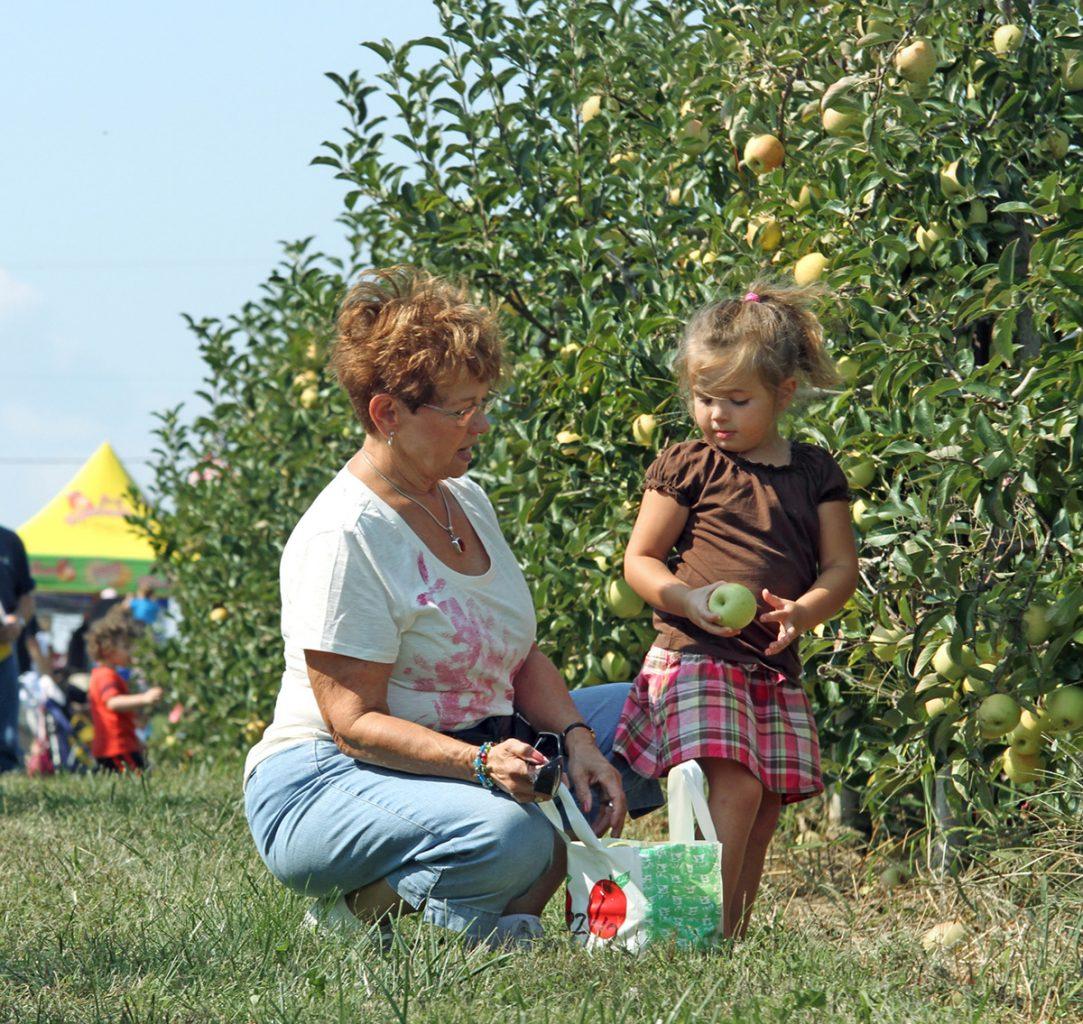 Marker Miller Orchards