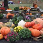 West Oaks Farm Market