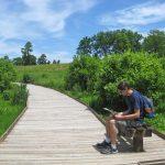 VA State Arboretum