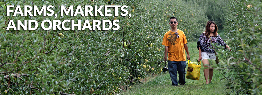 Farms Markets and Orchards
